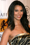 Roselyn Sanchez lizenzfreies stockfoto