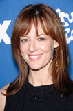 Rosemarie DeWitt Stock Photo