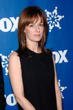 Rosemarie DeWitt Royalty Free Stock Photography