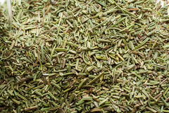Rosemary. Dry green rosemary, spices and taste, food Stock Photo