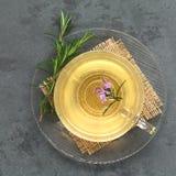 Τσάι της Rosemary Στοκ φωτογραφίες με δικαίωμα ελεύθερης χρήσης