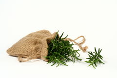 Rosemary bag. Rosemary in a small hessian bag Royalty Free Stock Images