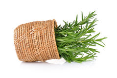 Rosemary in basket Royalty Free Stock Image