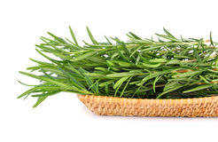 Rosemary in basket Stock Image