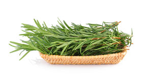 Rosemary in basket Stock Photography