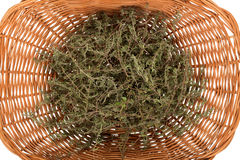 Rosemary in basket Stock Photo