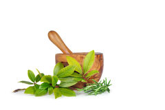 Rosemary and Bay Herb Leaves Royalty Free Stock Image