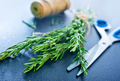 Rosemary. On the black board stock image