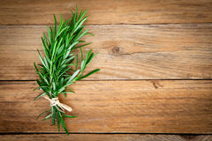 Rosemary bound Stock Images