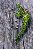 Rosemary branch and pepper Royalty Free Stock Photography
