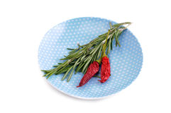 Rosemary branches and two red chili peppers on. Rosemary branches and two red chili peppers isolated on white Royalty Free Stock Photography