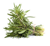 Rosemary bunch Royalty Free Stock Photography