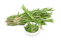 Rosemary bunch Royalty Free Stock Photo