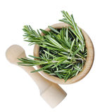 Rosemary bunch isolated Stock Image