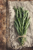 Rosemary bunch on a rustic background Stock Photos