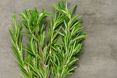 Rosemary bunch on stone background Royalty Free Stock Photos