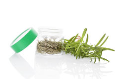 Rosemary, culinary aromatic herbs. Royalty Free Stock Photography