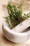 Rosemary e hierbas Foto de archivo libre de regalías
