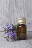 Rosemary essential oil. Stock Photography