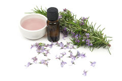 Rosemary essential oil royalty free stock image