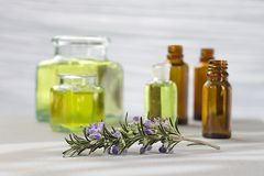 Rosemary essential oil Royalty Free Stock Photos