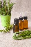 Rosemary essential oil stock photos
