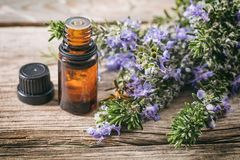 Rosemary essential oil and fresh blooming twig on a wooden table, closeup view stock photos