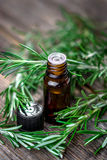 Rosemary essential oil and fresh rosemary Royalty Free Stock Image