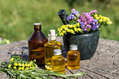 Rosemary essential oil in a mortar with bunch of herbs Royalty Free Stock Images