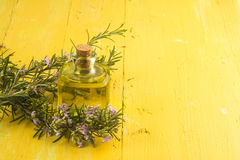 Rosemary essential oil. In small glass bottle and plant with flowers on yellow wooden background with copy space Royalty Free Stock Photography