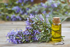 Rosemary essential oil Stock Photo