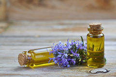 Rosemary essential oil Stock Image