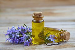 Rosemary essential oil Royalty Free Stock Photo