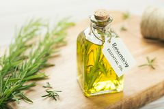 Rosemary essential oil with tag. stock photo