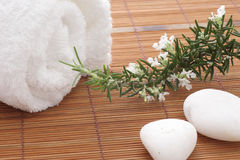 Rosemary flower spa Royalty Free Stock Images