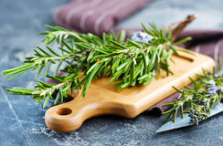 Rosemary. Fresh rosemary, herb on the wooden table Stock Image