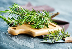 Rosemary. Fresh rosemary, herb on the wooden table Royalty Free Stock Photos