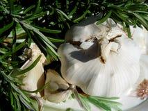 rosemary + garlic royalty free stock photography