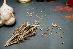 Rosemary garlic spices for a delicious dish. Rosemary garlic spices for delicious dishes on your table stock image