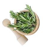Rosemary geïsoleerde bos stock afbeelding