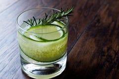 Rosemary Gin Gimlet Cocktail con la fetta del cetriolo fotografie stock libere da diritti