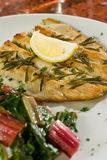 Rosemary grilled fish Royalty Free Stock Photos