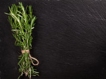 Rosemary herb bunch over stone Stock Image