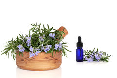 Rosemary Herb and Essence. Rosemary herb with flowers in an olive wood mortar with pestle and aromatherapy essential oil dropper glass bottle, over white stock photo