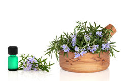 Rosemary Herb and Essence Royalty Free Stock Images