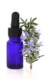 Rosemary Herb Essence stock image