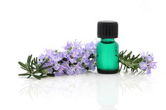 Rosemary Herb Essence Stock Images