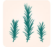 Rosemary herb silhouette. Rosemary herbs  illustration. Green silhouette isolated on light brown background Stock Photo