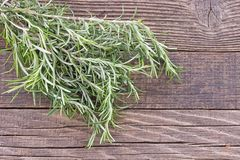 Rosemary herb on wooden background stock images