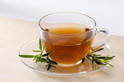 Rosemary Herbal Tea fotografia stock libera da diritti